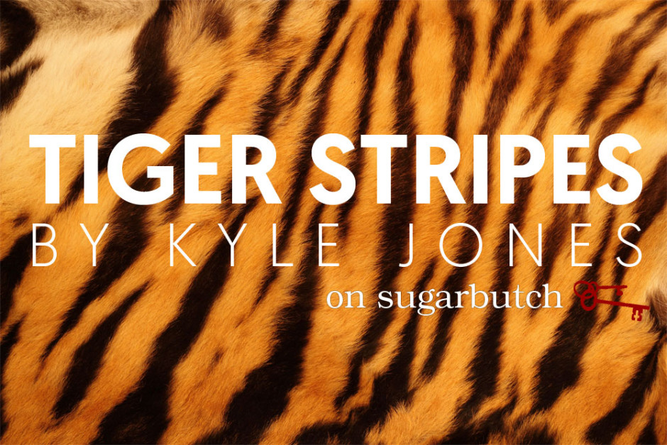 Tiger Stripes, Guest Post by Kyle Jones