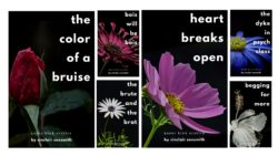 Announcement! The Novella Series is Here