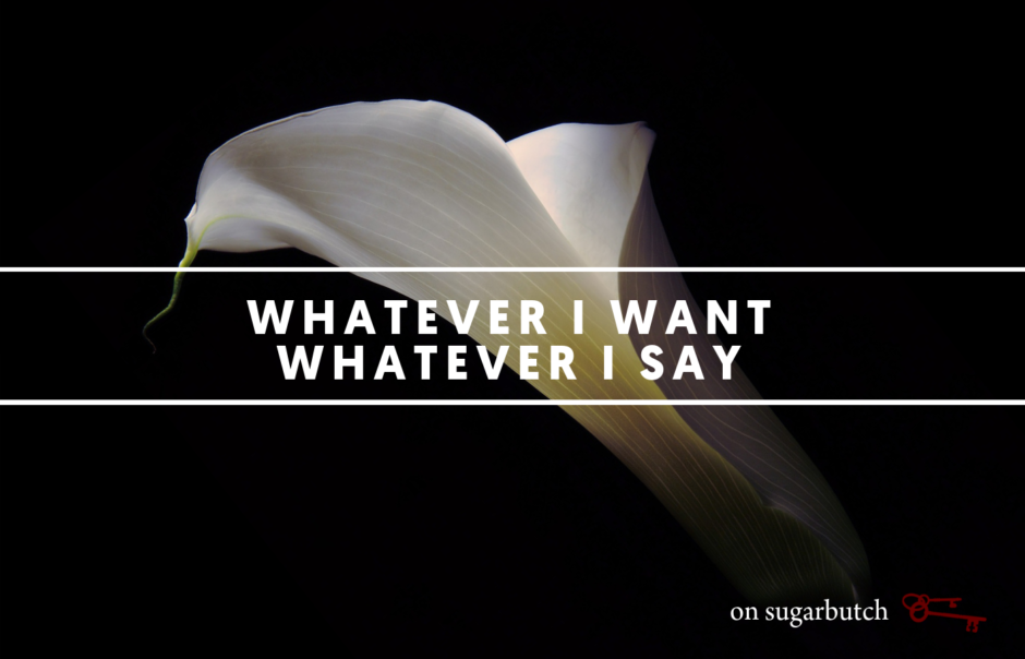 Whatever I Want, Whatever I Say