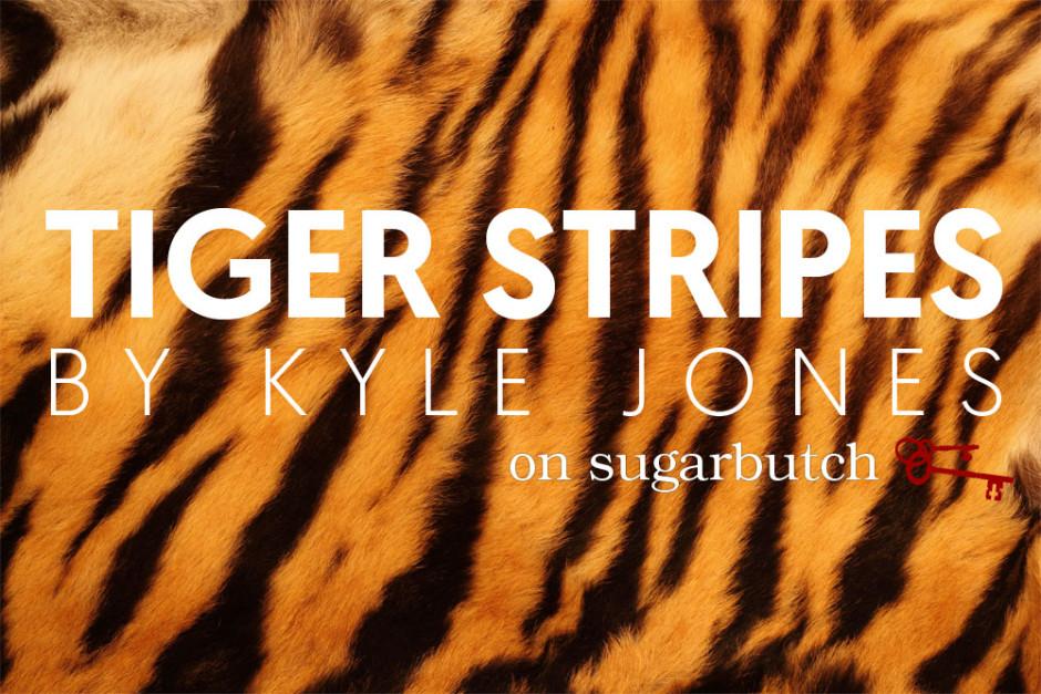 Tiger Stripes, Guest Post by Kyle Jones