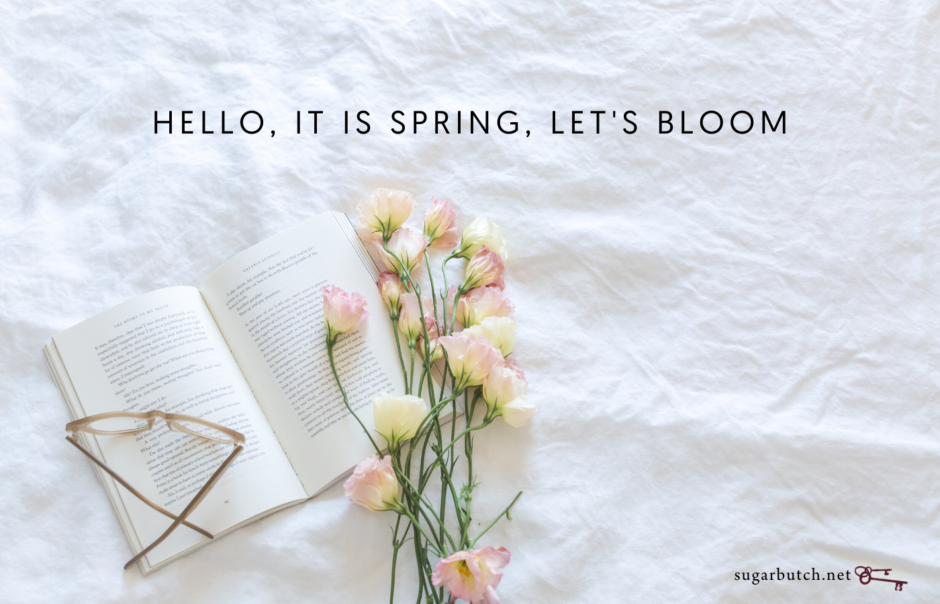 Hello, It Is Spring, Let's Bloom (Playlist)